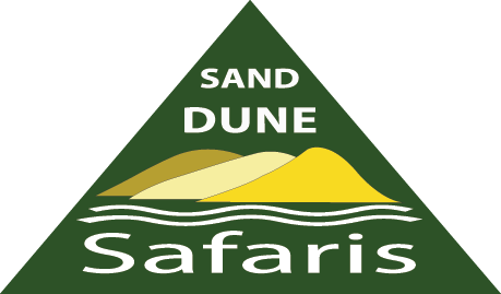 Sand Dune Safaris Stockton Beach